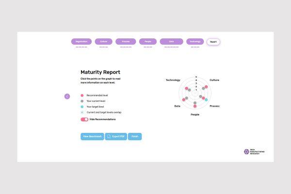 AMM-Report